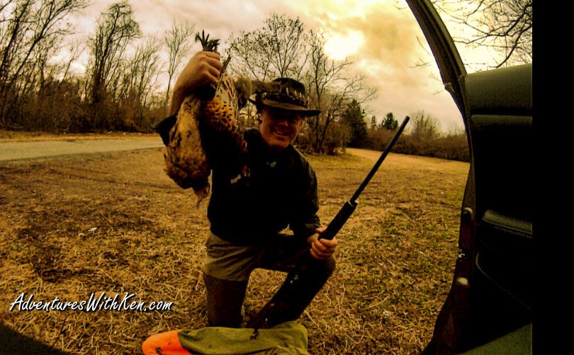 Ken Beam NJ Pheasant Hunting 2015