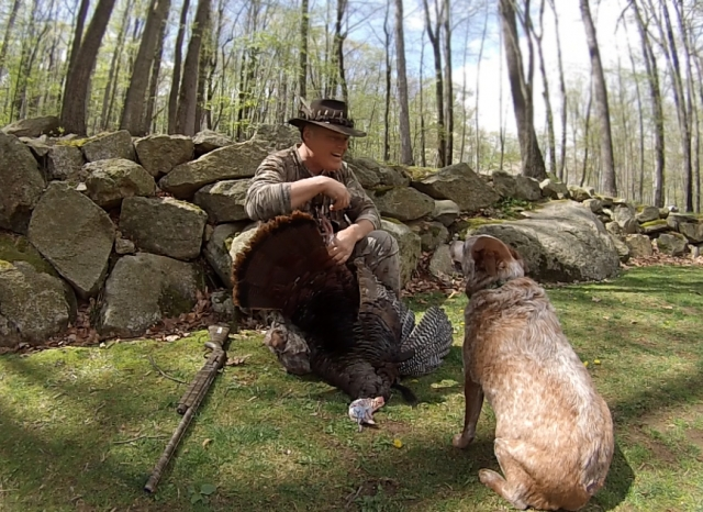"Ken Beam`s Aussie Cattle Dog, ""Dingo"" trying to get in ""Turkey Photo Shoot""!"