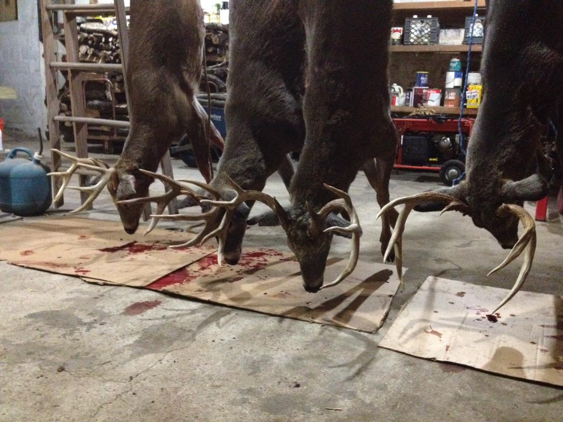2012 Zone 4 Bucks